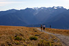 Autumn Hike at Hurricane Ridge
