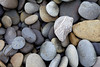 A colorful variety of beach stones adorn Ruby Beach on the Washington Coast.