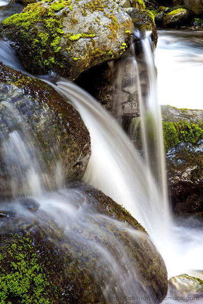 A spigot of waterfalls along Madeline Creek in the Olympic National Park near Madeline Creek campsite.