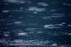 Rain falls upon Lake Crescent. The language of water.