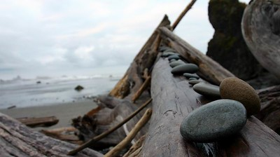 Drifting Logs, Ruby Beach