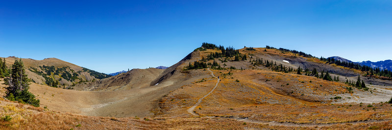 Obstruction Point Trail