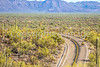 Organ Pipe National Monument in Arizona - C1-0370 - 72 ppi