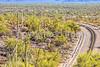Organ Pipe National Monument in Arizona - C1-0417 - 72 ppi