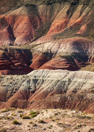 Red Mounds at Petrified Forest National Park