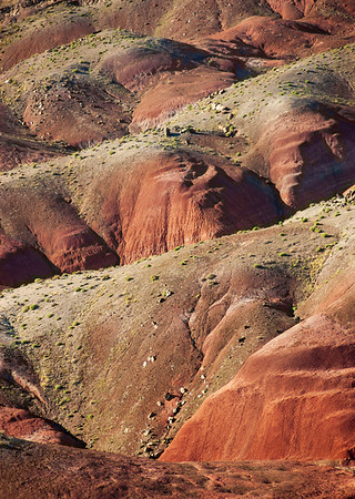 Red and Green Desert at Petrified Forest National Park