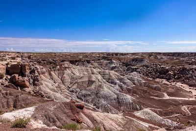 Blue Mesa Badlands