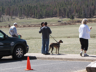 Viewers watching the Bighorn Rams at Sheep Lakes (in the middle is my son Jake, future daughter-in-law Rachel and their dog, Shugga)