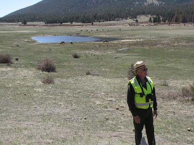 Ranger Don at Sheep Lakes
