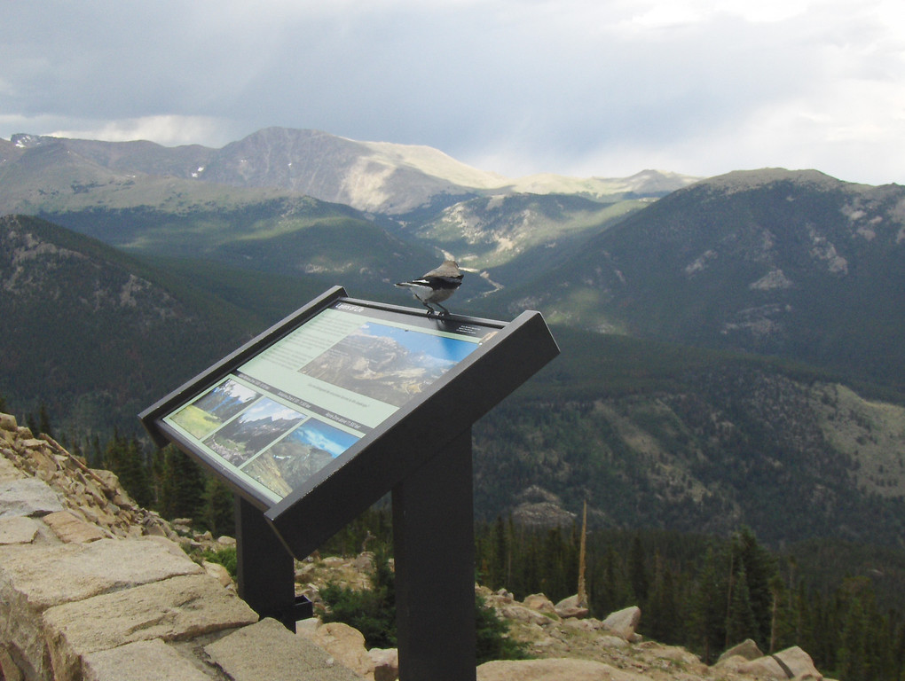 """July 2008 - GMA's first trip to RMNP - views from Trail Ridge Drive """"hmmm - where should I fly to next?"""""""