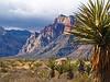 Redrock canyon just outside Las Vegas ... yep more to Nevada than gambling!!