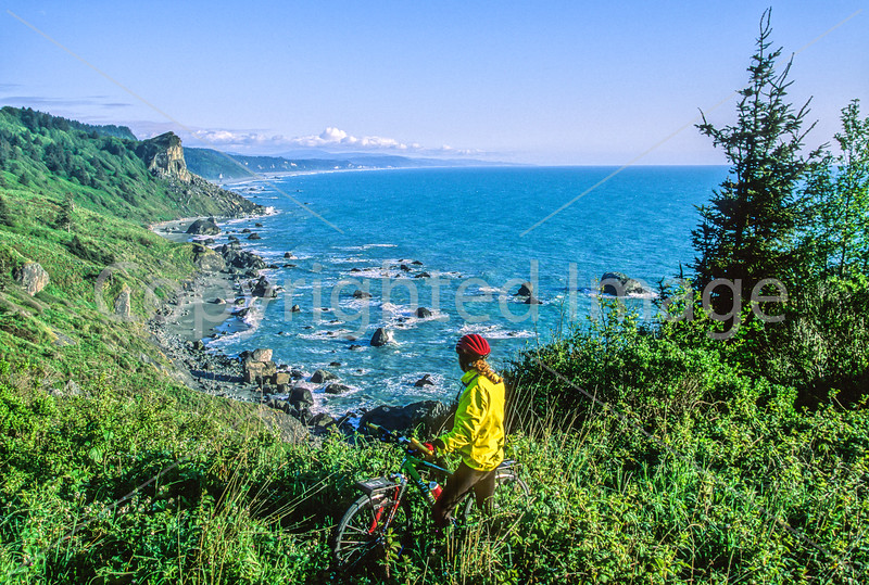 Cyclist at California's Redwood National Park - 3-2-3 - 72 ppi