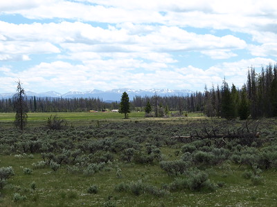 Mountains over the Harbison Meadow