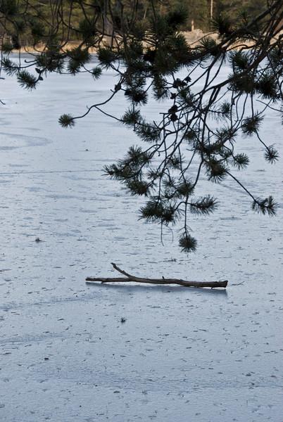 Frozen Sprague Lake