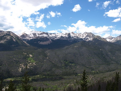 Mountains Above Forest Canyon
