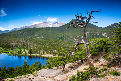 View from trail around Lily Lake, Rocky Mountain National Park, Colorado, June 2016.