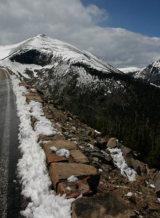 On Trail Ridge Rd