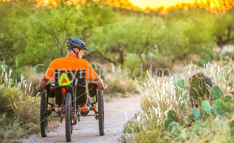 Saguaro National Park - C1-0398 - 72 ppi-2