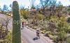 Cyclist(s) in Saguaro Nat'l Park, Arizona - 3-15 - C3 -0051 - 72 ppi-2