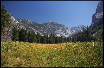 Sierra Mountains from Zumwalt Meadow