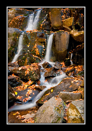 NJG351:  We climbed down to the bottom of Laurel Falls to capture these fantage points.