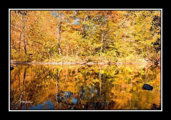 NJG3413: This picture was taken at the intersection of 73 and Little River Road.  As you can see the fall foliage reflection in the water was amazing.