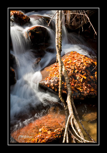 _NJG3596: Cascades along the Chimney Top Trail.