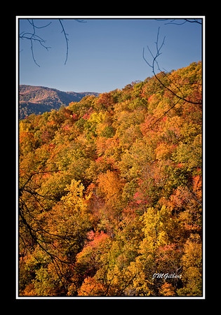 NJG3480:  The Mountains as seen through openings in the trail to Laurel Falls.