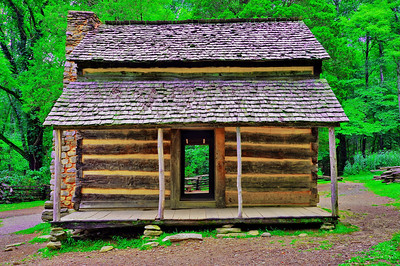 These early log home had only one large room with a front door and back door.  Large families lived in these one room (kitchen, living and bedroom) homes.  They had no bath rooms.