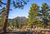 Sunset Crater Volcano National Monument - C3-0079 - 72 ppi