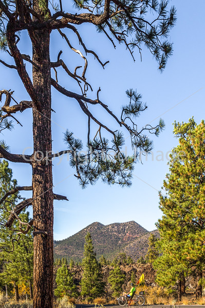 Sunset Crater Volcano National Monument - C3-0072 - 72 ppi