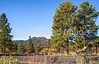 Sunset Crater Volcano National Monument - C3-0089 - 72 ppi-2