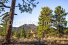 Sunset Crater Volcano National Monument - C3-0082 - 72 ppi