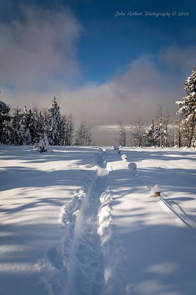 Snow Trail To Jackson Lake
