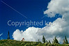 Mountain biker on Shadow Mt  Loop in Nat  Forest on edge of Grand Teton Nat'l Park - 1 - 72 ppi