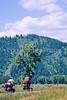 ACA bike tourers in Tetons Nat'l Park, Wyoming - 21 - 72 ppi