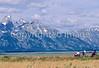 ACA bike tourers in Tetons Nat'l Park, Wyoming - 8 - 72 ppi