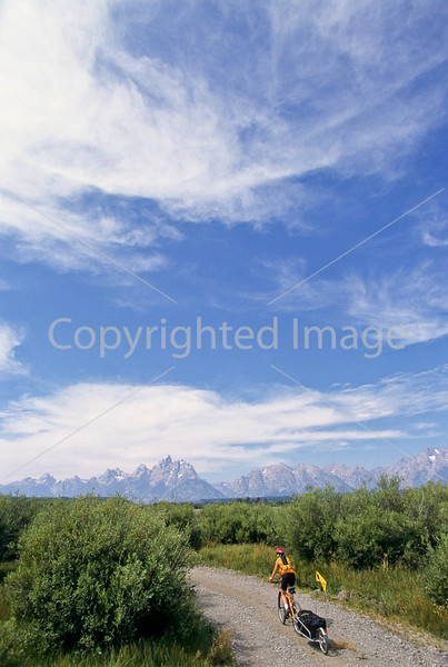 Mountain biker pulling BOB trailer in Grand Teton Nat'l Park - 1 - 72 ppi