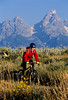 Mountain biker pulling BOB trailer in Grand Teton Nat'l Park - 5 - 72 ppi