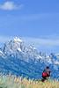 ACA bike tourers in Tetons Nat'l Park, Wyoming - 16 - 72 ppi