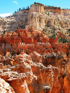 Looking up towards Bryce Point from the Peek a Boo trail..