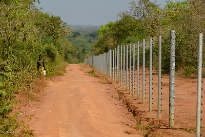 The Sanctuary is fenced in, to keep the Rhino save from poachers