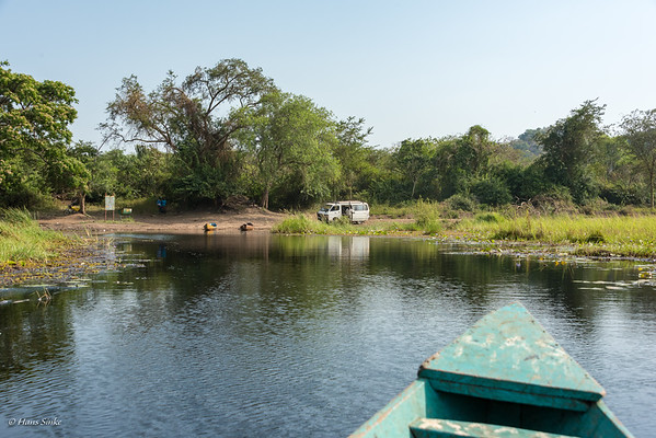 We didn't see any Shoebill but it was a beautiful trip