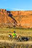 Vermilion Cliffs National Monument - C1-0155 - 72 ppi