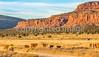 Vermilion Cliffs National Monument - C1-0080 - 72 ppi-2