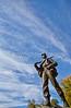 Vicksburg Nat'l Military Park, MS - D1-C2- - 72 ppi-15