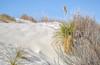 White Sands National Monument, NM - C1-0099 - 72 ppi