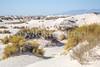 White Sands National Monument, NM - C1-0116 - 72 ppi