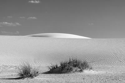 Bad Dune Rising