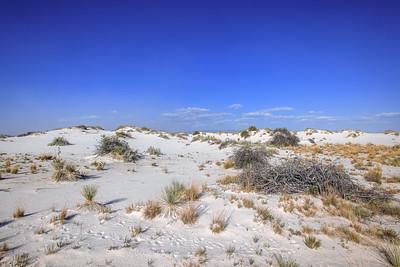 Debris In The Sand